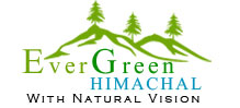 Evergreen Himachal Tour Travel