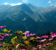 Gorgeous Panoramas of the Himalayas in Manali